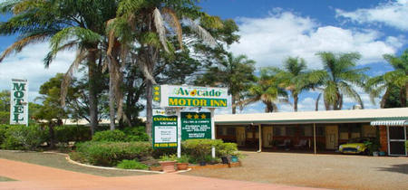 Avocado Motor Inn - Accommodation Mooloolaba