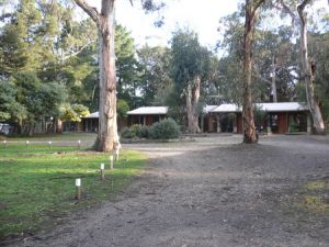 Koala Park Resort - Accommodation Mooloolaba