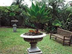 Bangalow Retreat - Accommodation Mooloolaba