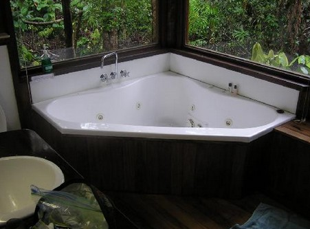 The Canopy Rainforest Tree Houses and Wildlife Sanctuary - Accommodation Mooloolaba