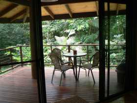 Cape Trib Exotic Fruit Farm Bed and Breakfast - Accommodation Mooloolaba