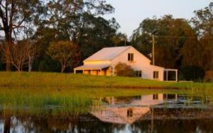 Madigan Vineyard - Accommodation Mooloolaba
