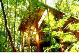 The Canopy Treehouses - Accommodation Mooloolaba