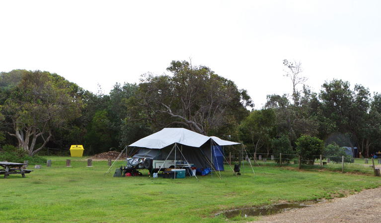 Illaroo campground - Accommodation Mooloolaba