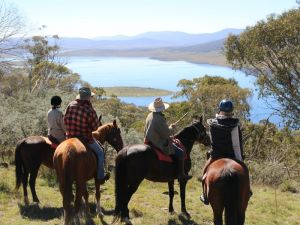 Reynella Homestead and Horseback Rides - Accommodation Mooloolaba