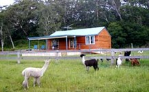 Moorallie Cottage Farm Stay - Accommodation Mooloolaba