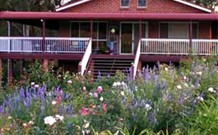 Rose Patch Bed and Breakfast - Accommodation Mooloolaba