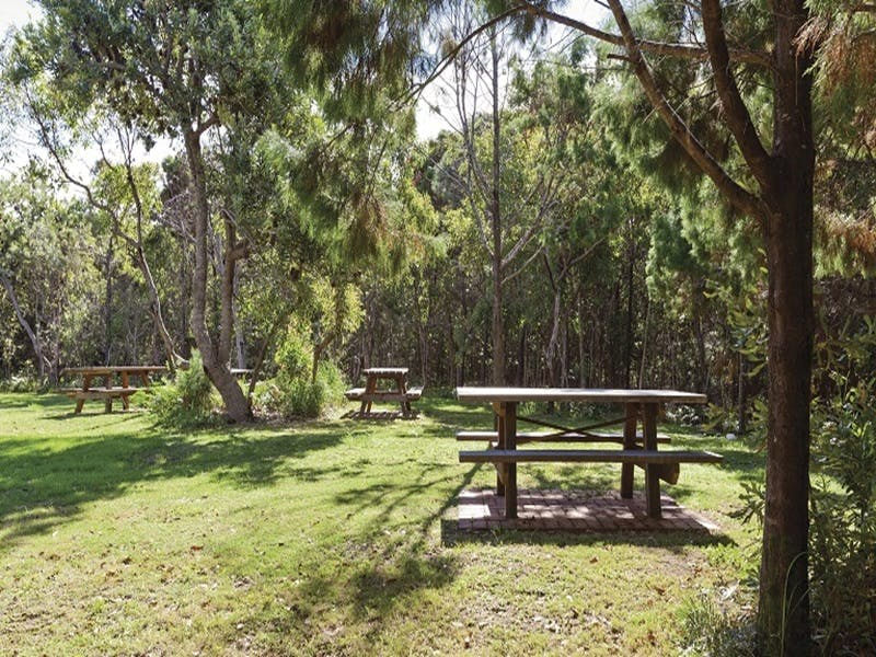 Illaroo group camping area - Accommodation Mooloolaba