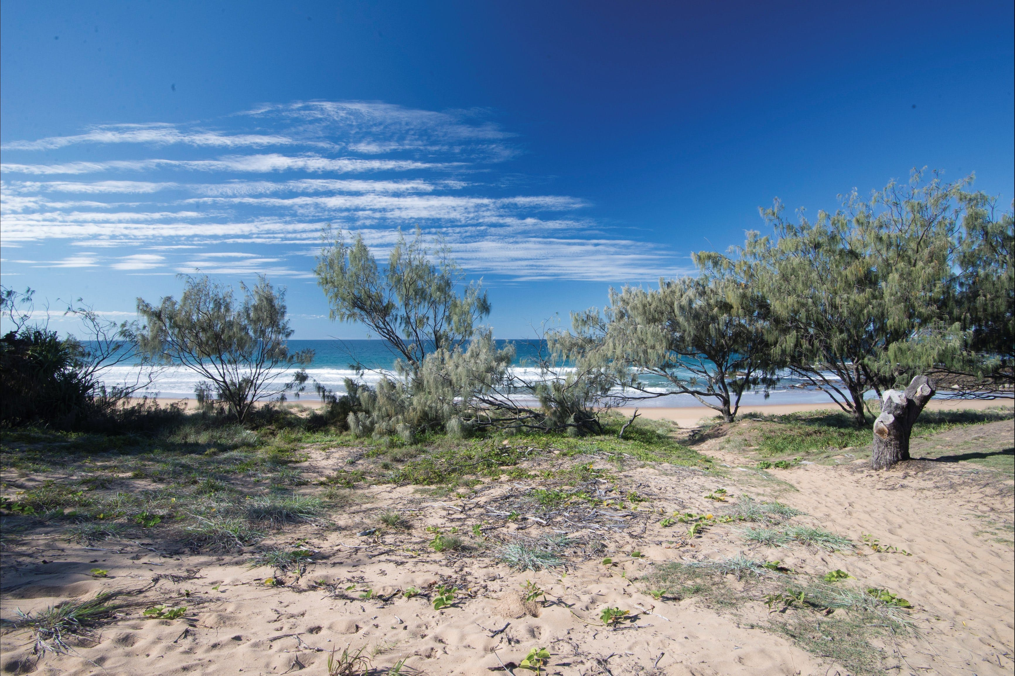 Deepwater National Park camping - Accommodation Mooloolaba