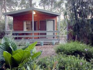 A Maze N Things Holiday Park - Accommodation Mooloolaba