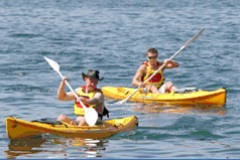 Manly Kayaks - Accommodation Mooloolaba