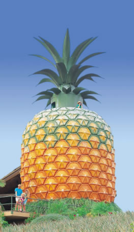 The Big Pineapple - Accommodation Mooloolaba