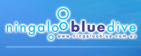 Ningaloo Blue Dive - Accommodation Mooloolaba