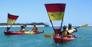 Kayak Noosa - Accommodation Mooloolaba