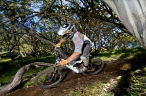All Terrain Cycles - Accommodation Mooloolaba
