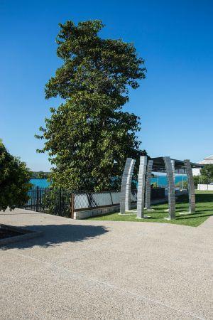 A Cup of Culture in Mackay - Accommodation Mooloolaba