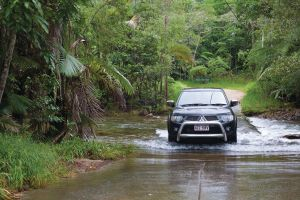 The Pioneer Valley and Eungella National Park - Accommodation Mooloolaba