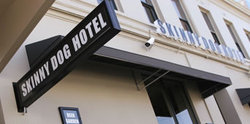 Skinny Dog Hotel - Accommodation Mooloolaba