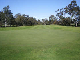 Maffra Golf Club - Accommodation Mooloolaba
