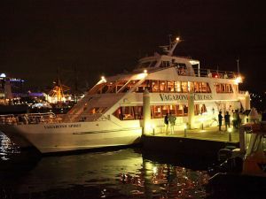 Halloween Party Cruise - Accommodation Mooloolaba