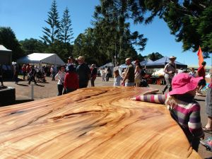 Maleny Wood Expo From Seed to Fine Furniture - Accommodation Mooloolaba