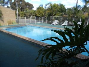 Cottonwood Motor Inn - Accommodation Mooloolaba
