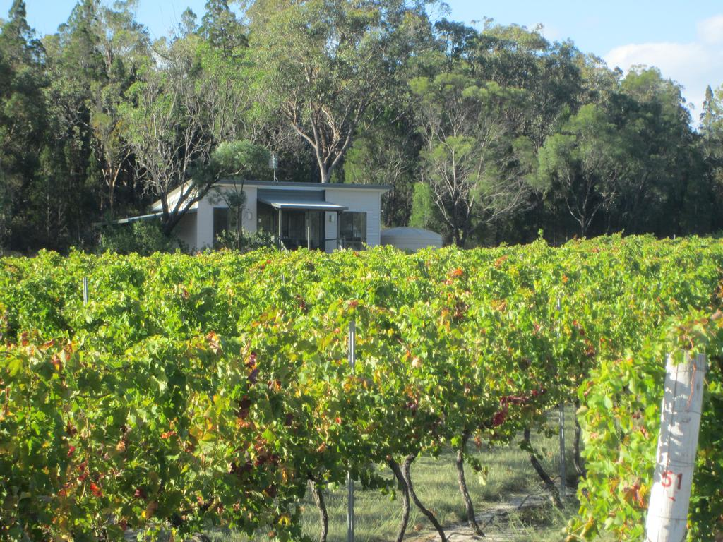 Just Red Wines Cabins - Accommodation Mooloolaba