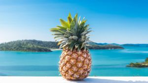 Pineapple House Whitsundays - Accommodation Mooloolaba