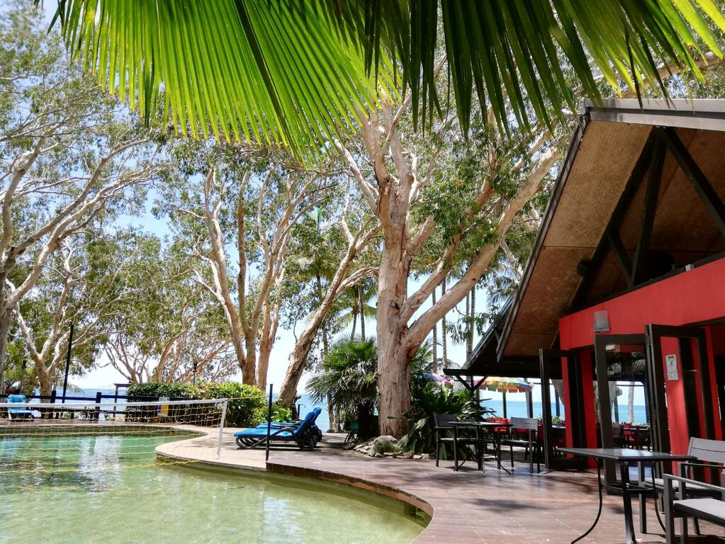 Turtle Cove Beach Resort - Adults Only LGBTQIA  Allies - Accommodation Mooloolaba