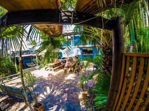 Cool Bananas Backpackers - Accommodation Mooloolaba