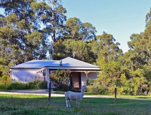 Araluen Park Cottages - Accommodation Mooloolaba
